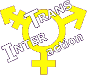 logo_transinteraction.png